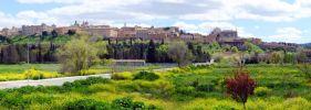 Toledo desde la Vega Baja