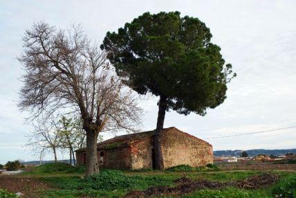 Villa romana de El Saucedo. Acceso